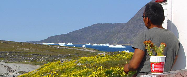South Greenland, farmer